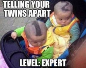 Telling_Your_Twins_Apart