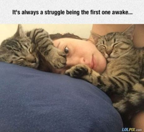 Always_A_Struggle