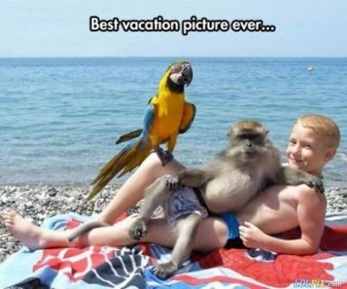 Epic_Vacation_Picture