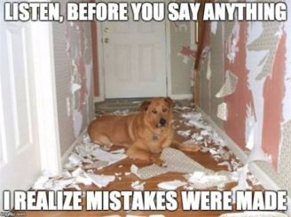 Realize_Mistakes_Were_Made