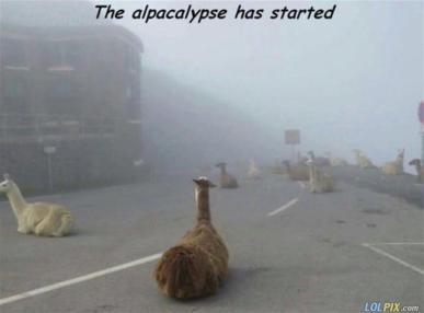 The_Alpacalypse