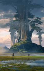 raphael-lacoste-giant-tree