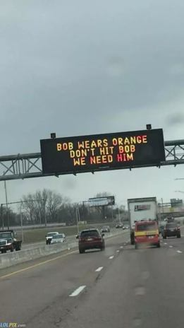 Bob_Wears_Orange